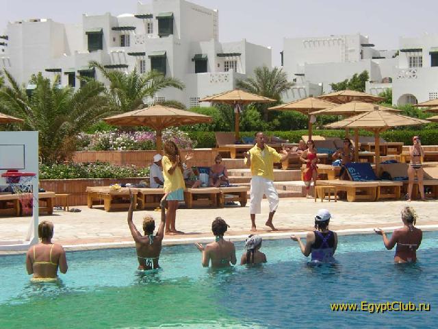 Мамба В Египте