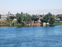 The bank of the river Nile