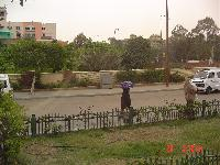 тетенька с сумкой : Египет : Фотографии : Фото из Египта : Египетский...